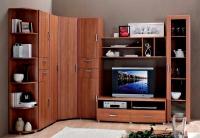 Мебель для гостиной Боровичи