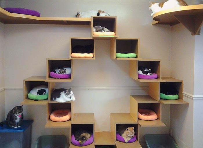 Дом из коробки для кота своими руками