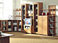 Мебель для гостиной BRW