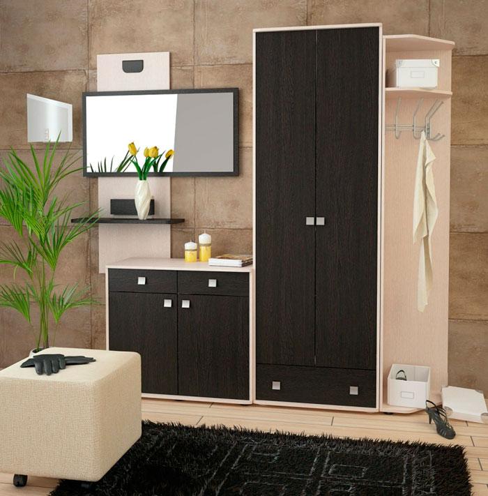 Набор мебели для прихожей Корвет 19, комплектация 5