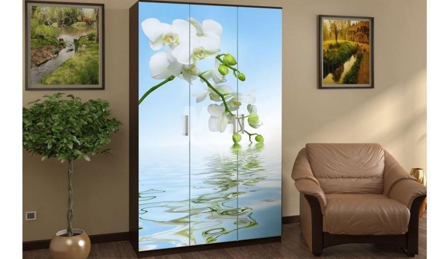 Шкаф распашной Миф Орхидея, 3-х створчатый